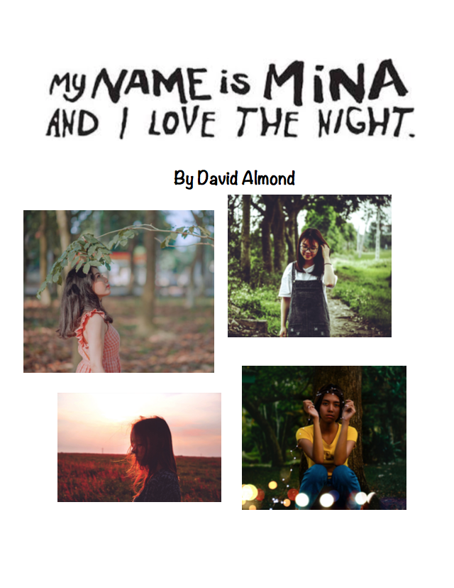 My Name Is Mina And I Love The Night By David Almond Novel Workbook Novels Workbook Reading Comprehension Questions