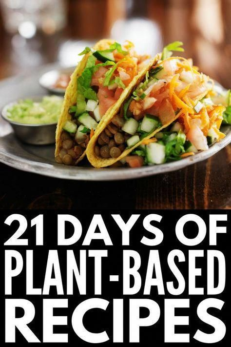 Plant Based Recipes For Beginners Crockpot