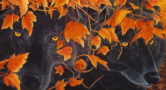 Three wolves by Graeme Stevenson