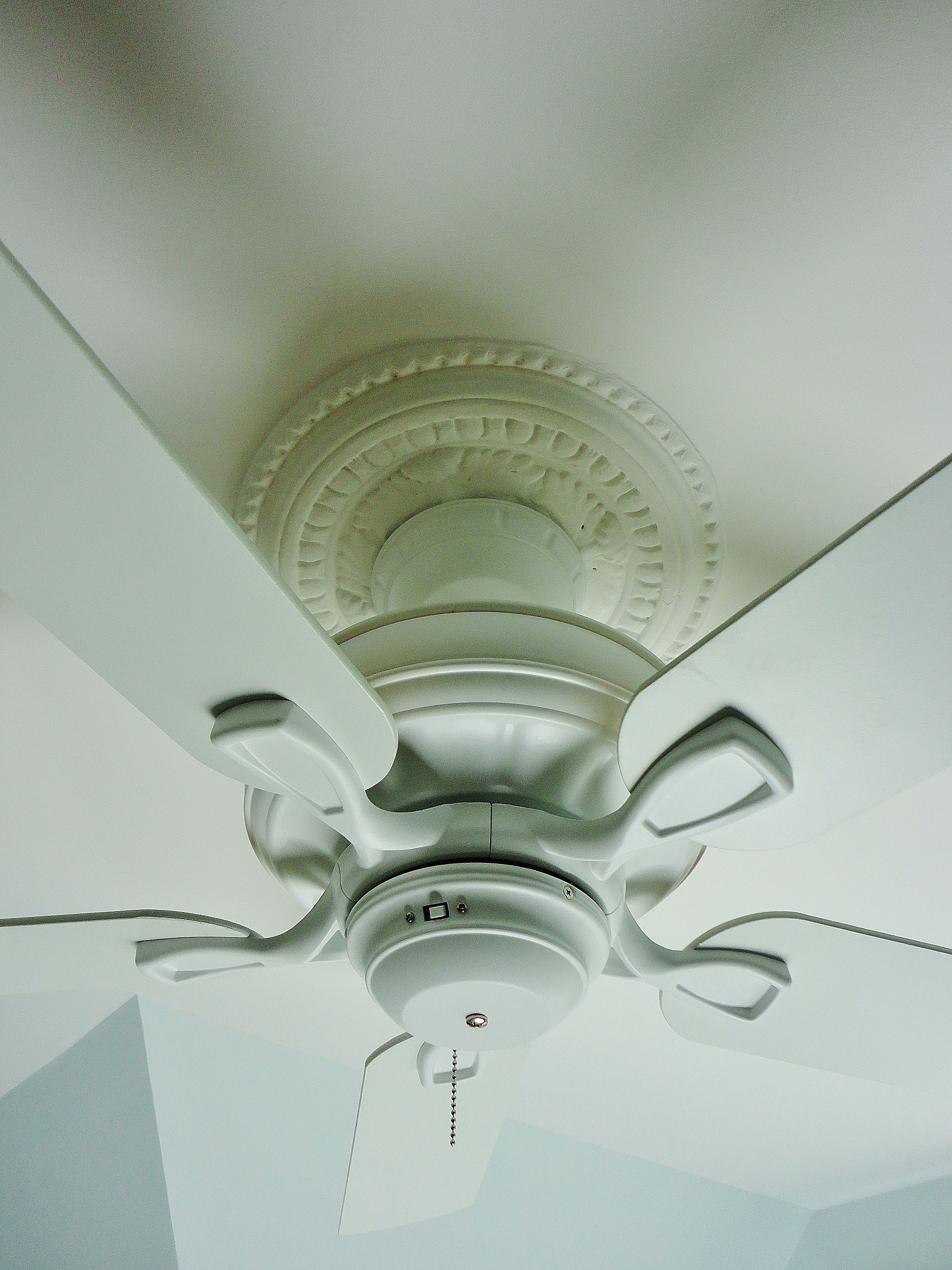 Electrician finally installed the ceiling fan The plaster ceiling