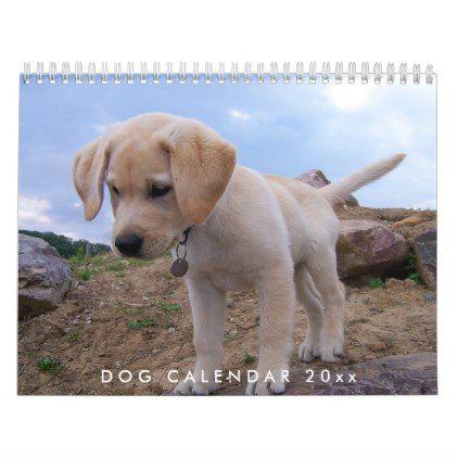 Dog Calendar 2020 With Your Photos Zazzle Com Labrador