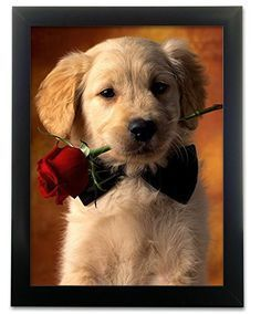 Dog with Rose 3d Print - Golden Retriever Puppy Holding a Red Rose - 3d Holographic Lenticular Picture - Valentine's Day Gift - Red Roses - Vday Decorations