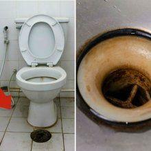 Elimina las marcas de sarro del inodoro con este TRUCO ...