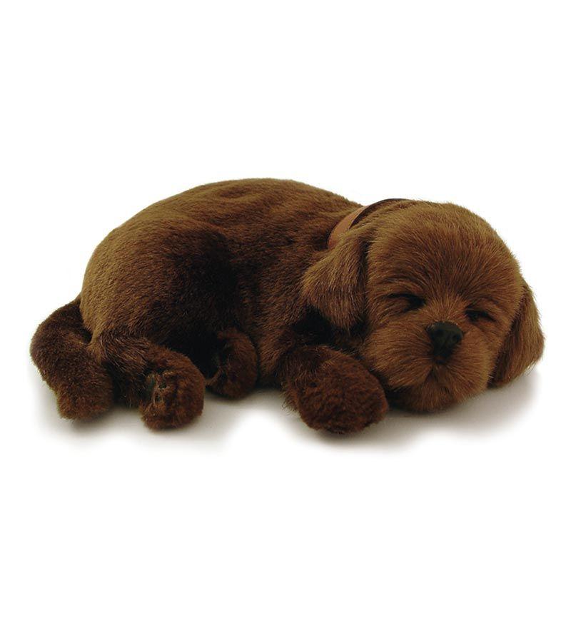 Chocolate Lab Perfect Petzzz Puppy Chocolate Lab Plush Dog Toys Dog Pet Beds
