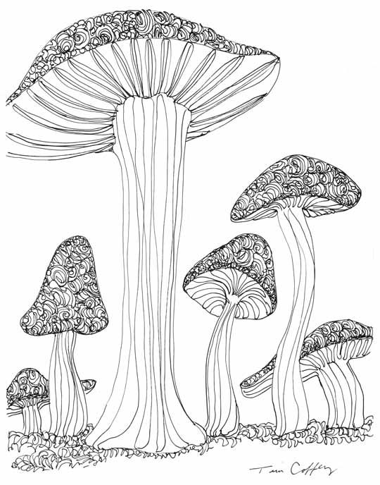coloring pages of shrooms - photo#30