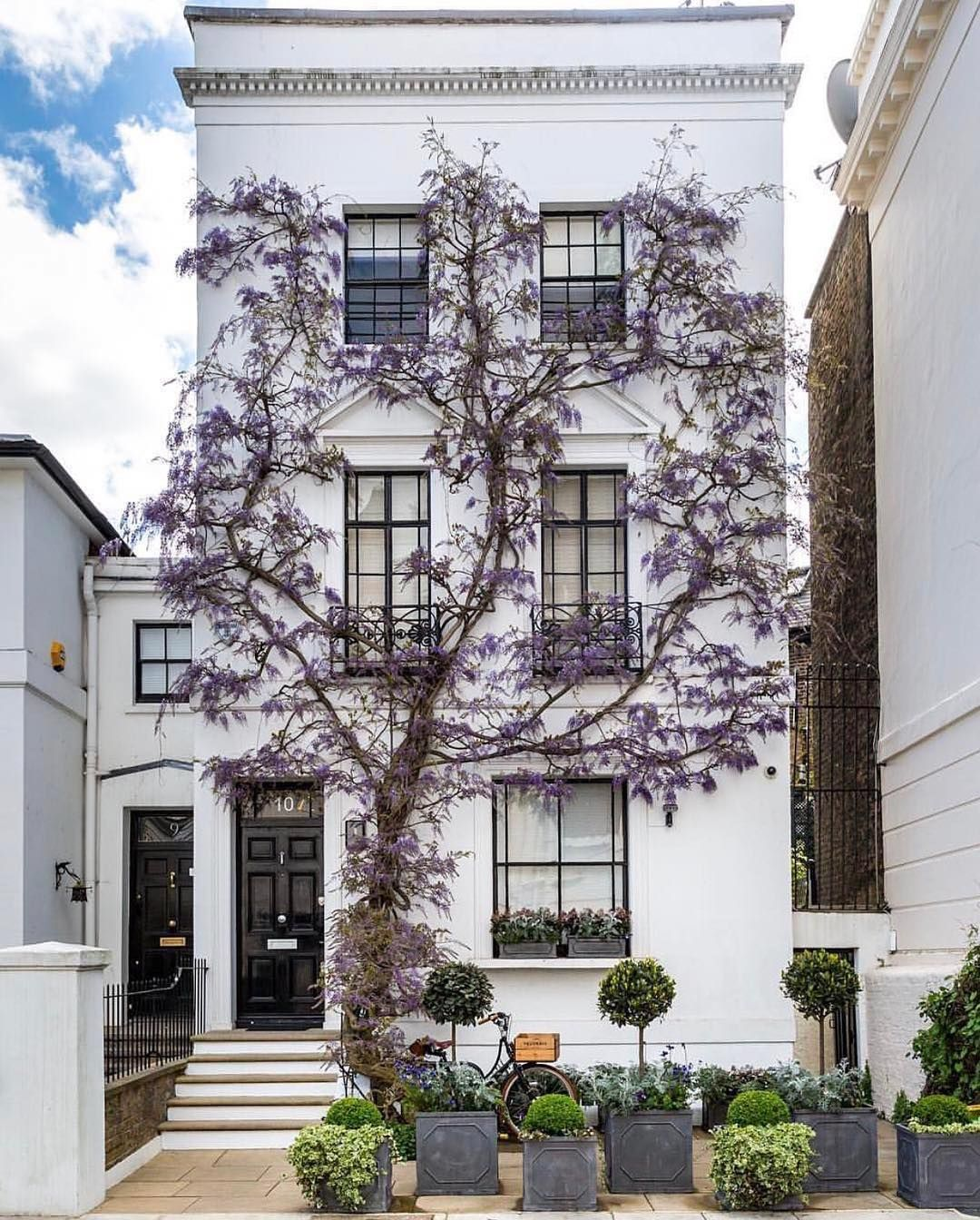 Design Interiors Architecture (@thelocalproject) On Instagram: «London  Wisteria Photographed By @