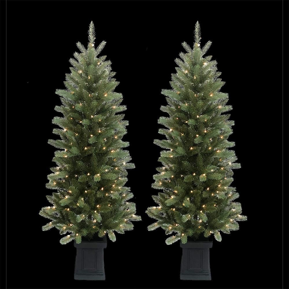 Home Accents Holiday 6 ft. PreLit Douglas Fir Potted
