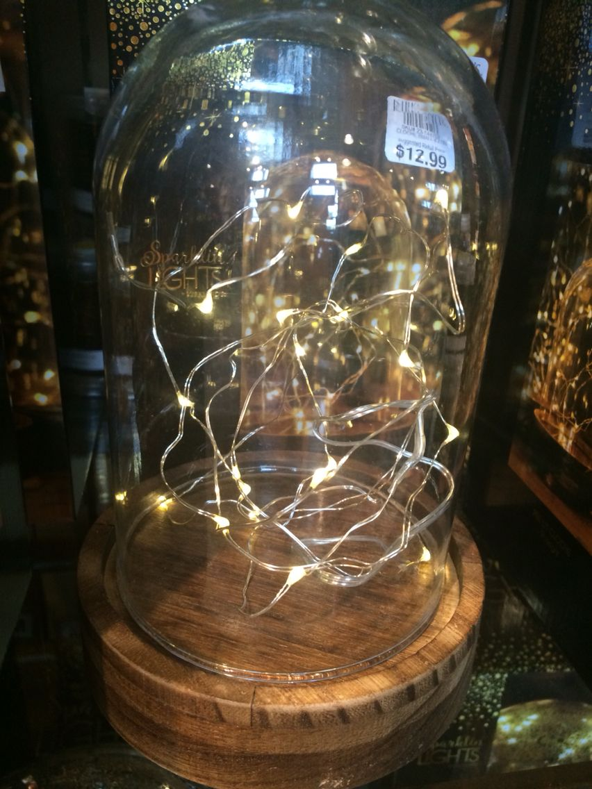 Twinkle lights in a mini cloche!