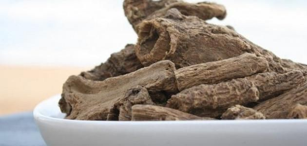 القسط الهندى بالإنجليزية Saussurea Costus وهى عبارة عن اعواد خشبية هندية الأصل وله اسماء كثيرة فمن ضمن هذه الاسماء القسط Apricot Seeds Raw Organic Organic