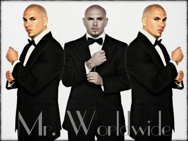 Pitbull pitbull pitbull rapper wallpaper 33068782 pitbull pitbull pitbull rapper wallpaper 33068782 fanpop voltagebd Image collections