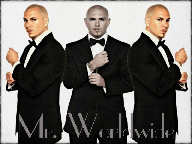 Pitbull Google Search Pitbull Rapper Pitbull The Singer Pitbulls