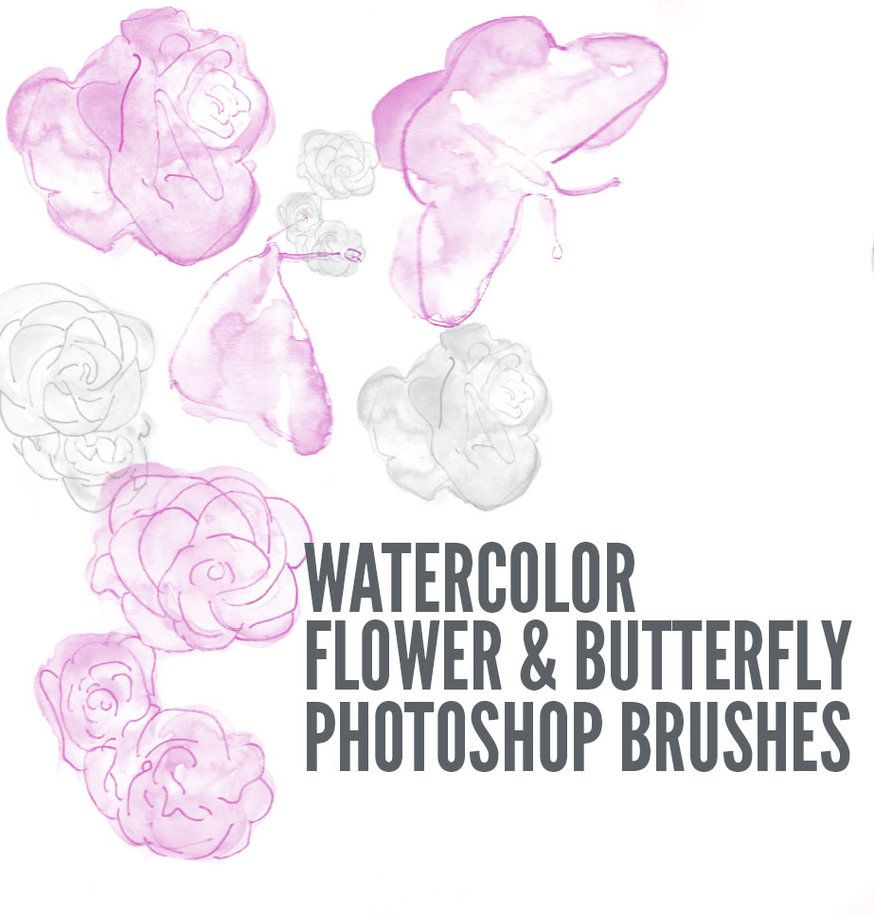 Watercolorfloral By Paisleyblvd Inspiration灵感 Photoshop