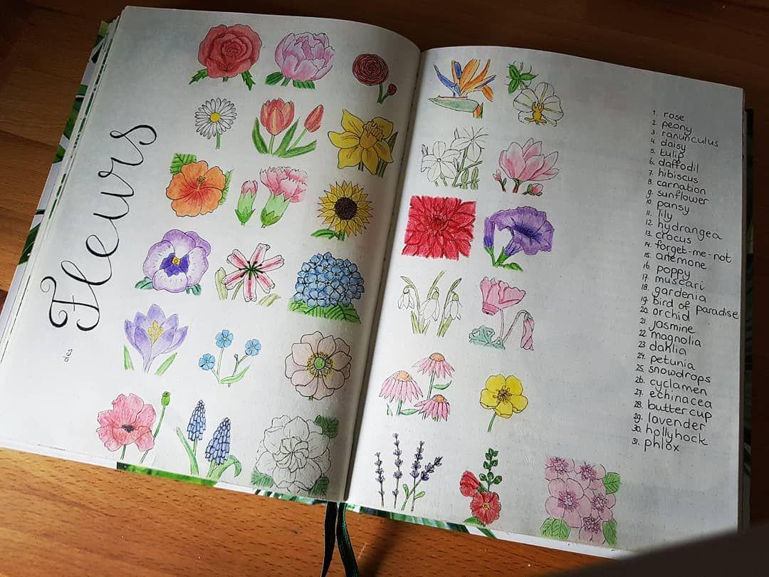 DWU MAR20   Planner bullet journal, Doodles, Doodle art