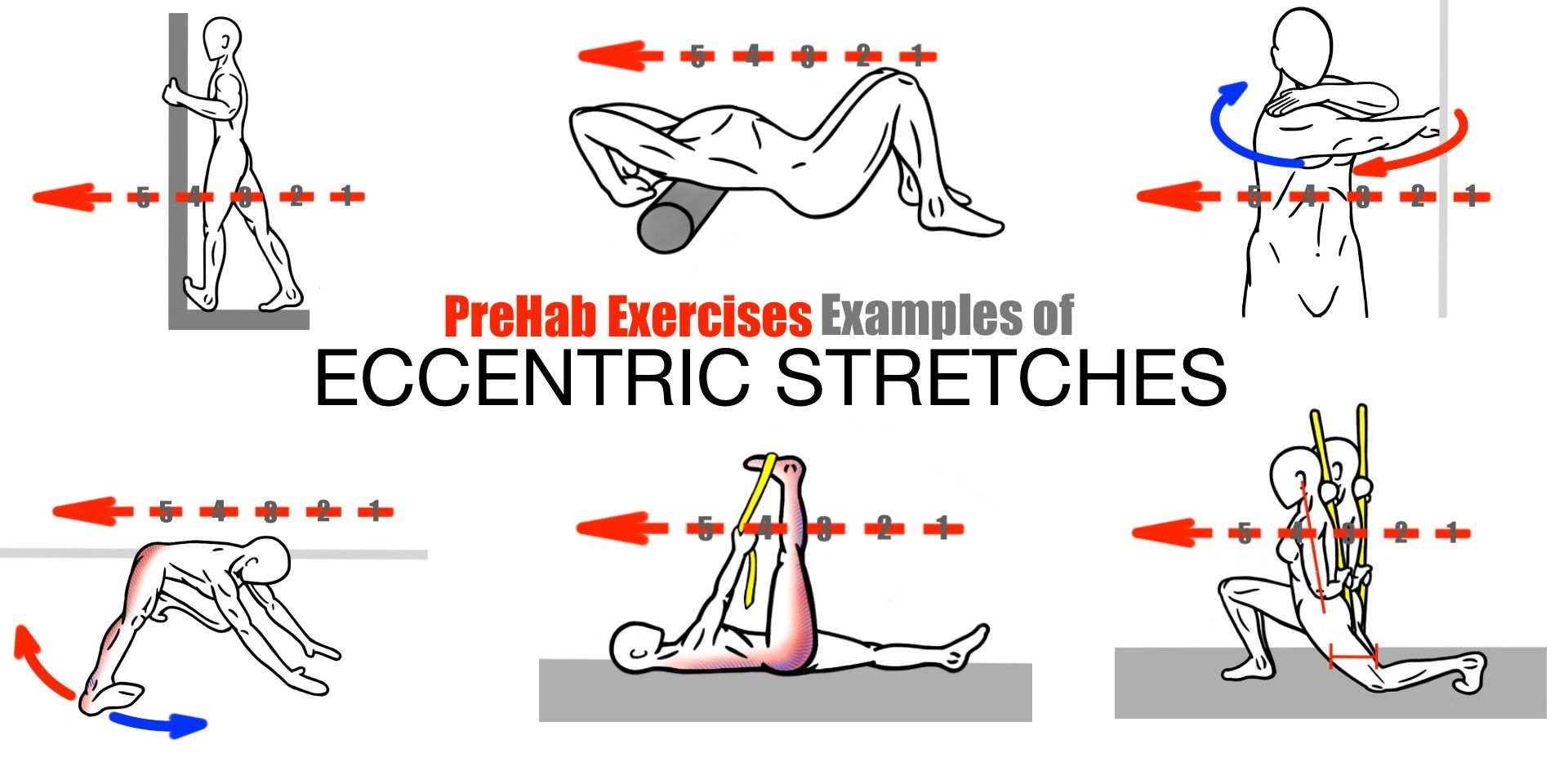 Prehab exercises examples of eccentric stretching eccentric.