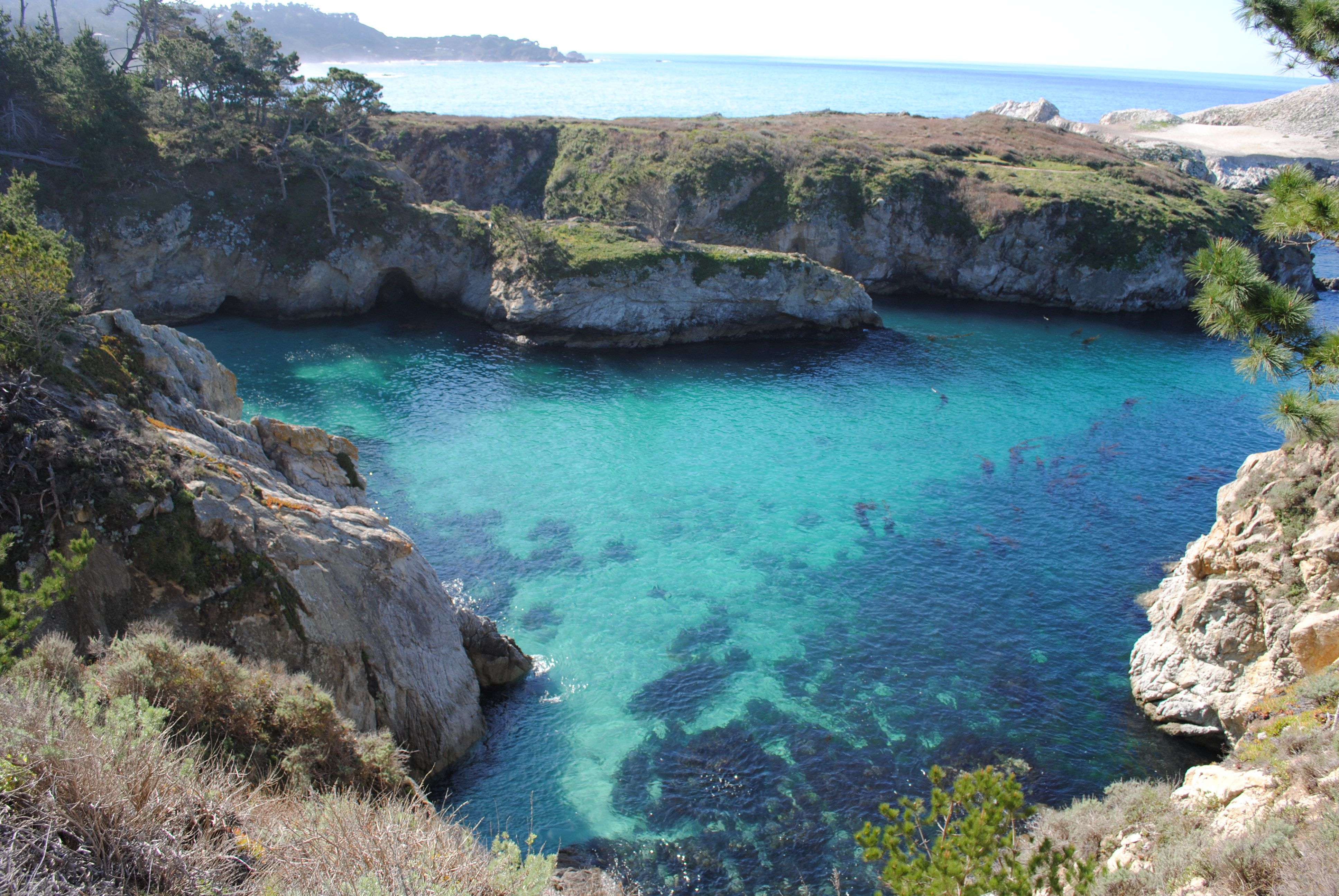 Http Kellitravels Com    Point Lobos State Natural Reserve