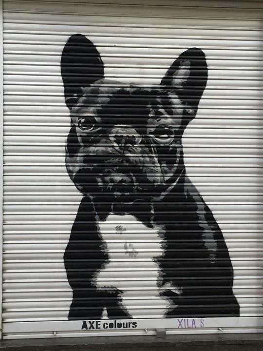 Arte De Rua, Cão, Triste