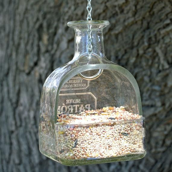 Photo of Patron Tequila Hanging Planter or Bird Feeder / Hanging Succulent Planter / Patron Bottle Planter Gift / Hanging Plants Succulent Terrarium