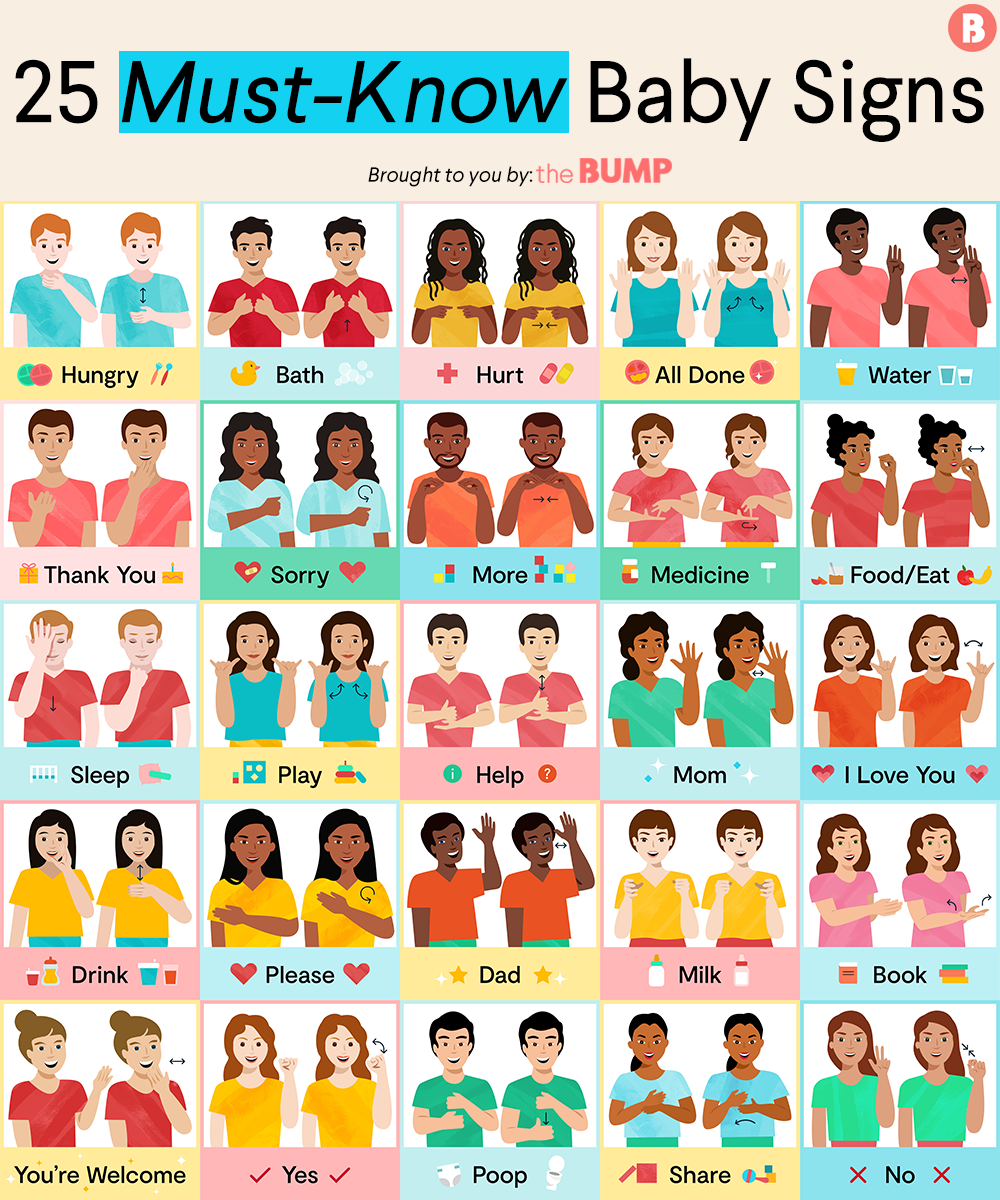 image about Baby Sign Language Printable titled How in the direction of Train Boy or girl Signal Language: 25 Boy or girl Indicators in the direction of Understand