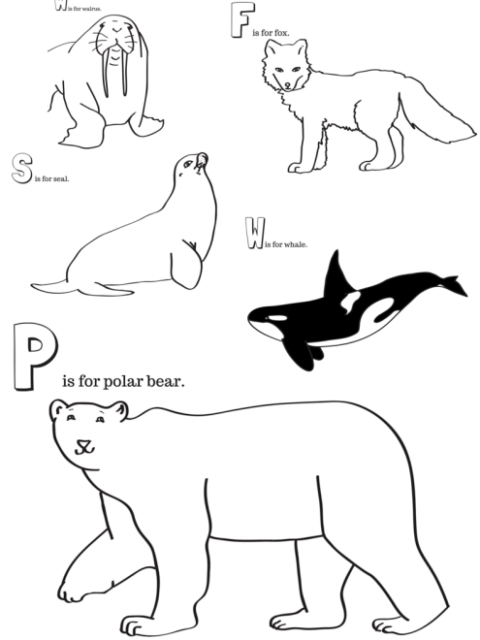 Arctic Animals Printable Coloring