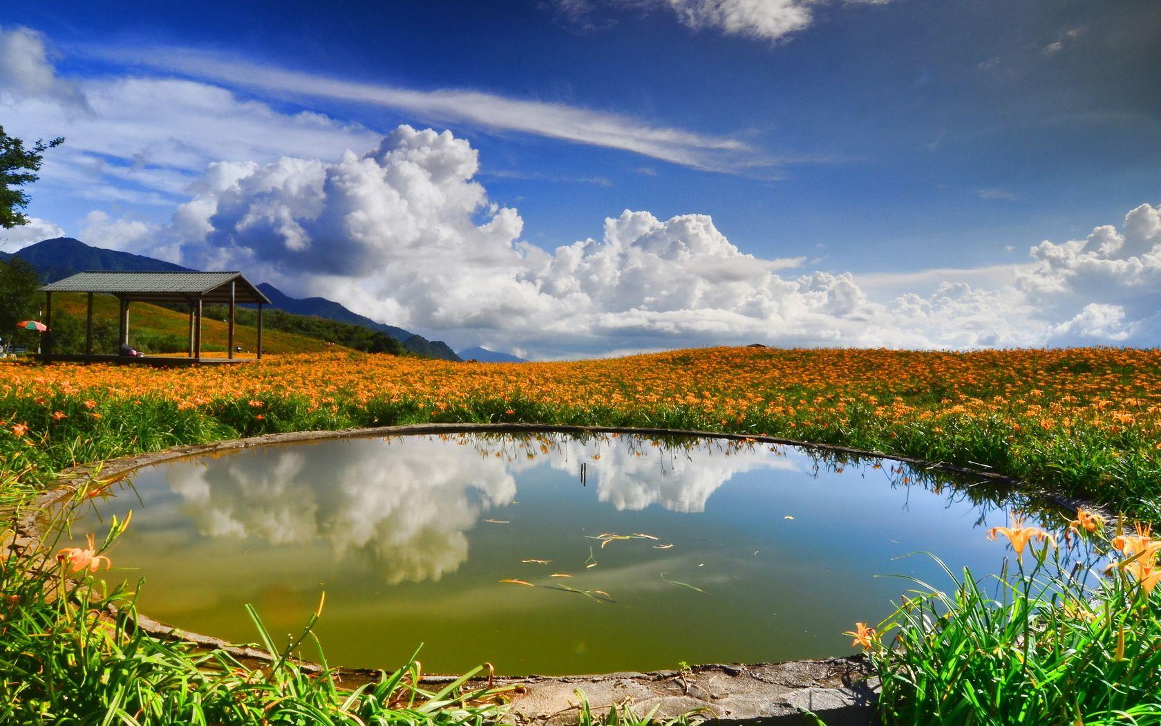 Round Pond Landscape Wallpaper Hd Landscape Nature Photography
