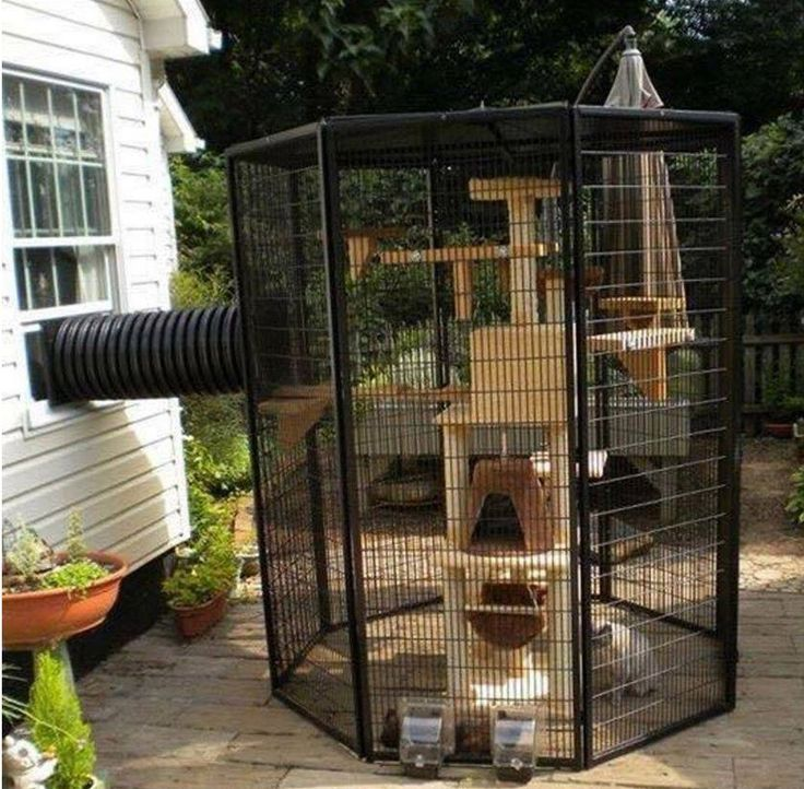 custom built pet cage - Google Search   animals   Outdoor ...