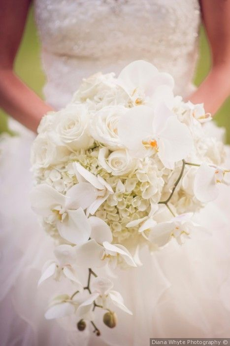 Beautiful White Orchid Rose And Hydrangea Bouquet Mark And