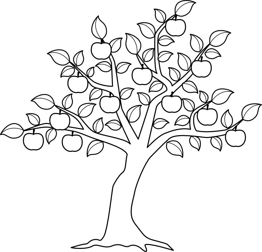 Apple Tree Jpg 858 826 Tree Coloring Page Tree Drawing Flower Coloring Pages