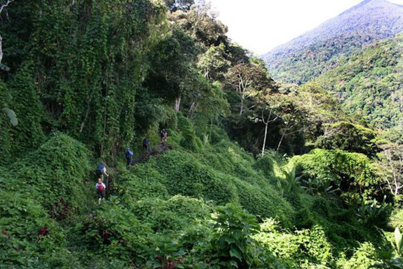 22 Most Dangerous Hiking Trails Ranked | Hiking trails, Future ...