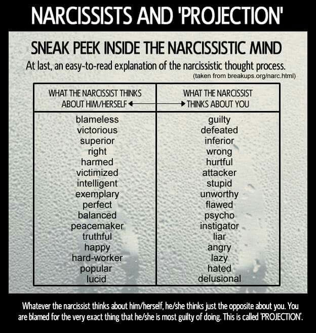 what are examples of a narcissists behavior in relationship