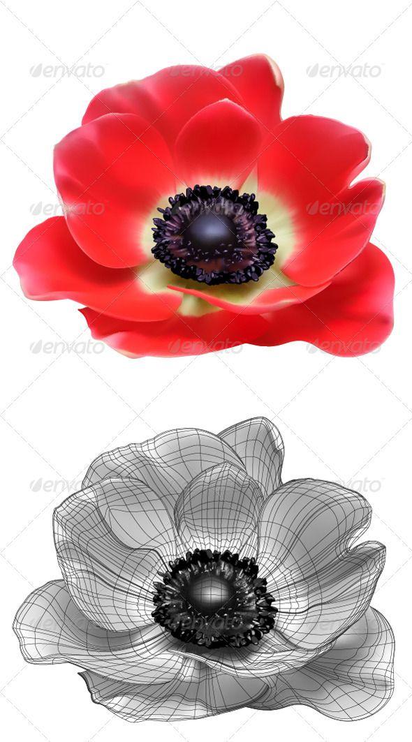 Red Flower Vector Illustration Anemone Tattoo Flower Art Drawing Flower Tattoos