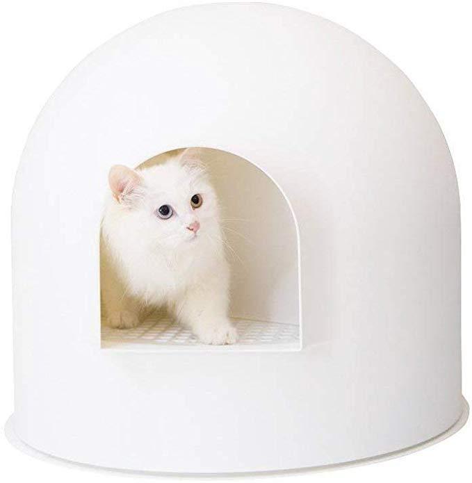 Amazon Com Pidan Studio Snow House Igloo Cat Litter Box Red Dot Design Award Winner White Pet Supplies Cat Litter Cat Litter Box Litter Box