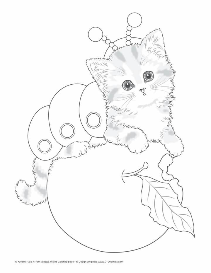 Cat For Colouring Cat Coloring Page Cute Coloring Pages Animal Coloring Pages