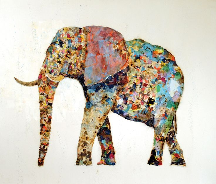 how to make collage of wild animals