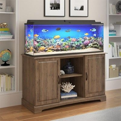 Aquarium Ripleys