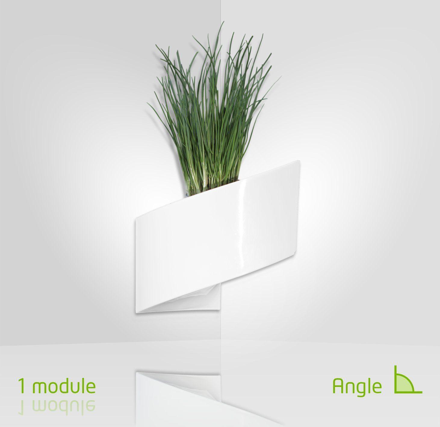 Modul\'Green - Vaso per piante a muro Design - Interno / Esterno ...
