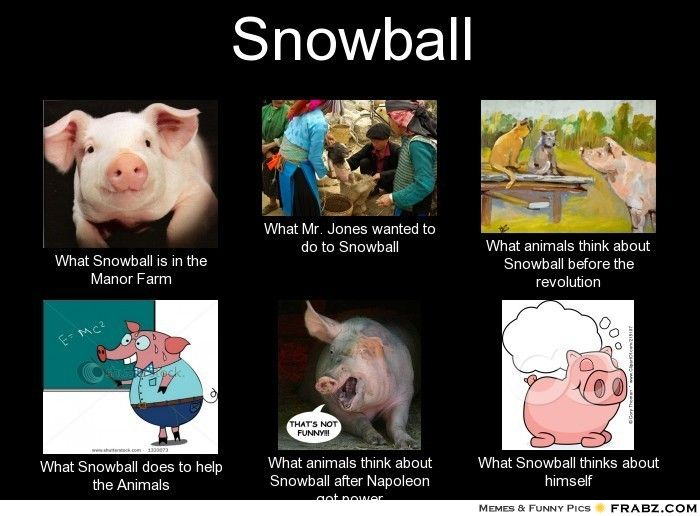 "animal farm snowball essay ""animal farm, by george  the most obvious examples of symbolism in ""animal farm are old major, napoleon, and snowball, symbolizing  and essay questions."