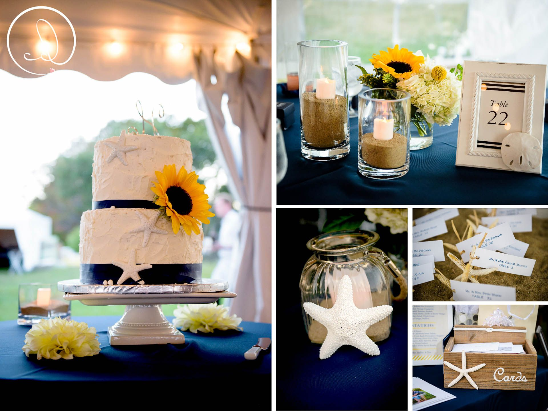 navy and gold seaside theme for seacoast science center