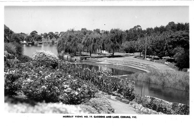 C1950 gardens and lake coburg melbourne victoria australia for Garden pond melbourne