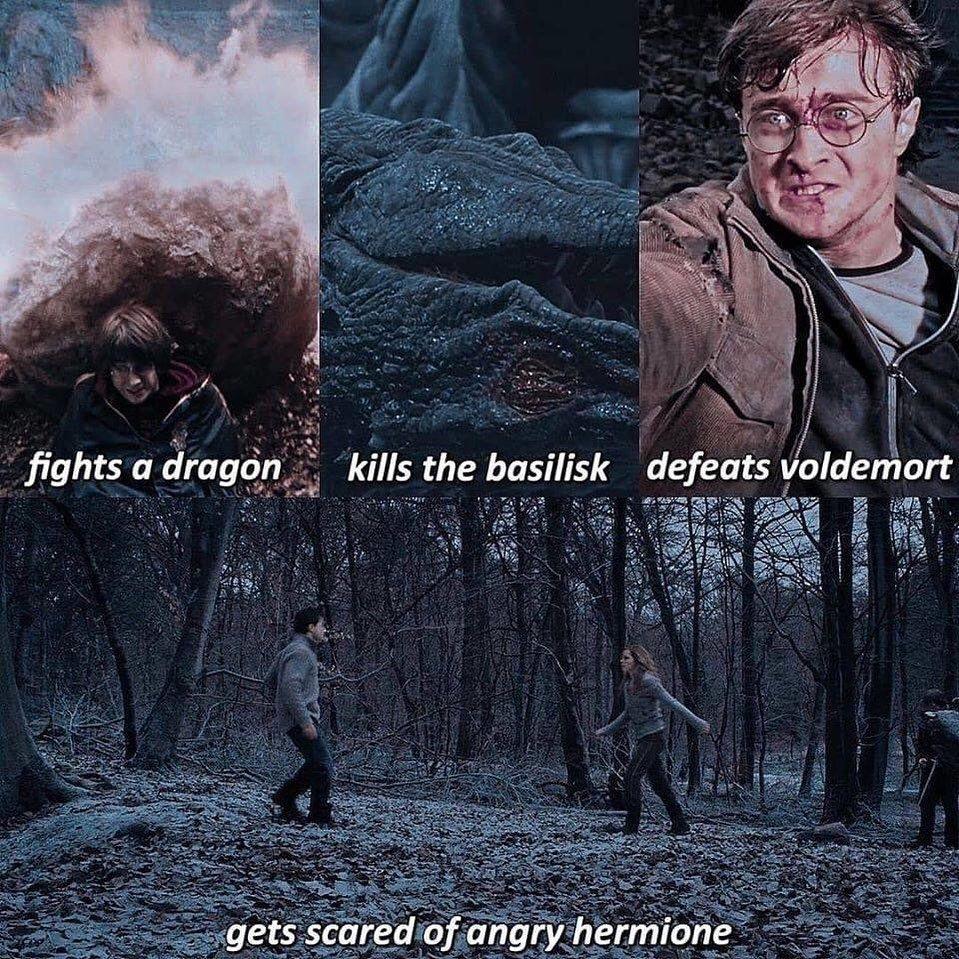 22 3 Mil Curtidas 136 Comentarios Harry Potter Fan Page Wizardpost S No Instagram What S Y In 2020 Harry Potter Harry Potter Memes Hilarious Harry Potter Jokes