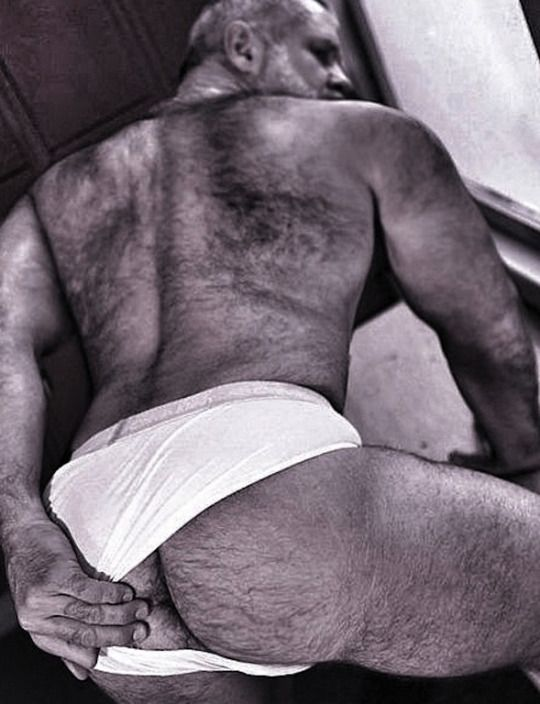 bear Hairy ass daddy