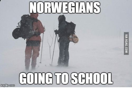 25 Best Memes About Snow In Norwegian Snow In Norwegian Memes Cute Memes Memes Norwegian