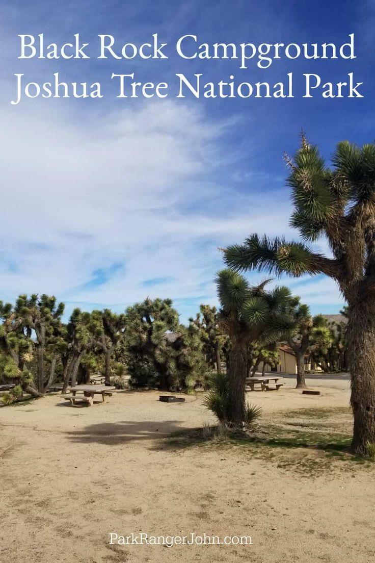 Black Rock Campground Joshua Tree Np Us National Park