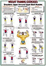 Arm and Shoulder Workout Chart   Arm Back and Shoulder ...