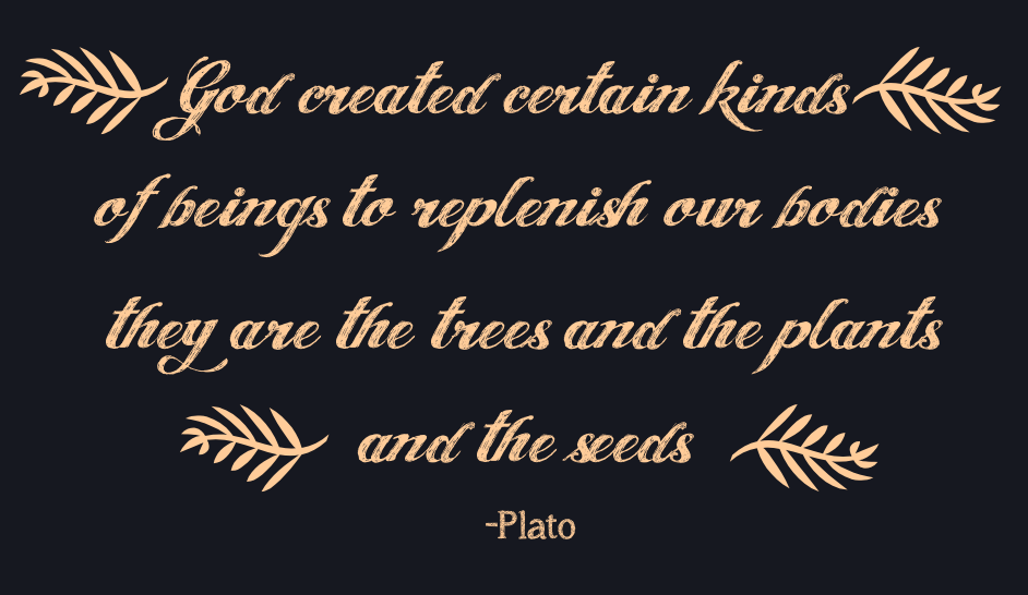 God created certain kinds of creatures to replenish our bodies, and they are the trees and the plants and the seeds.