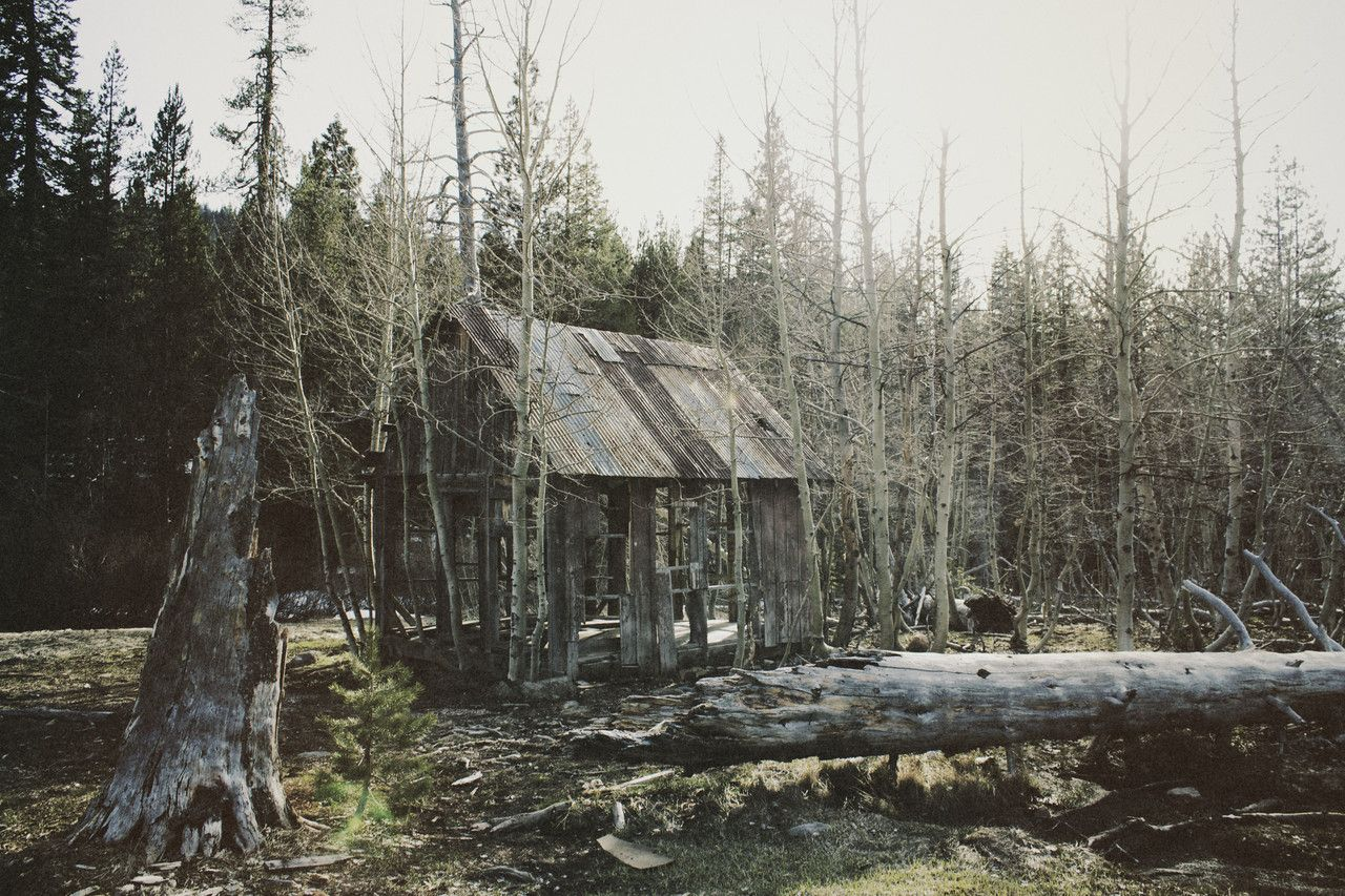 The stories some cabins could tell. Abandoned cabin in King's Beach, Lake Tahoe, California. Submitted by Luke Palmer.
