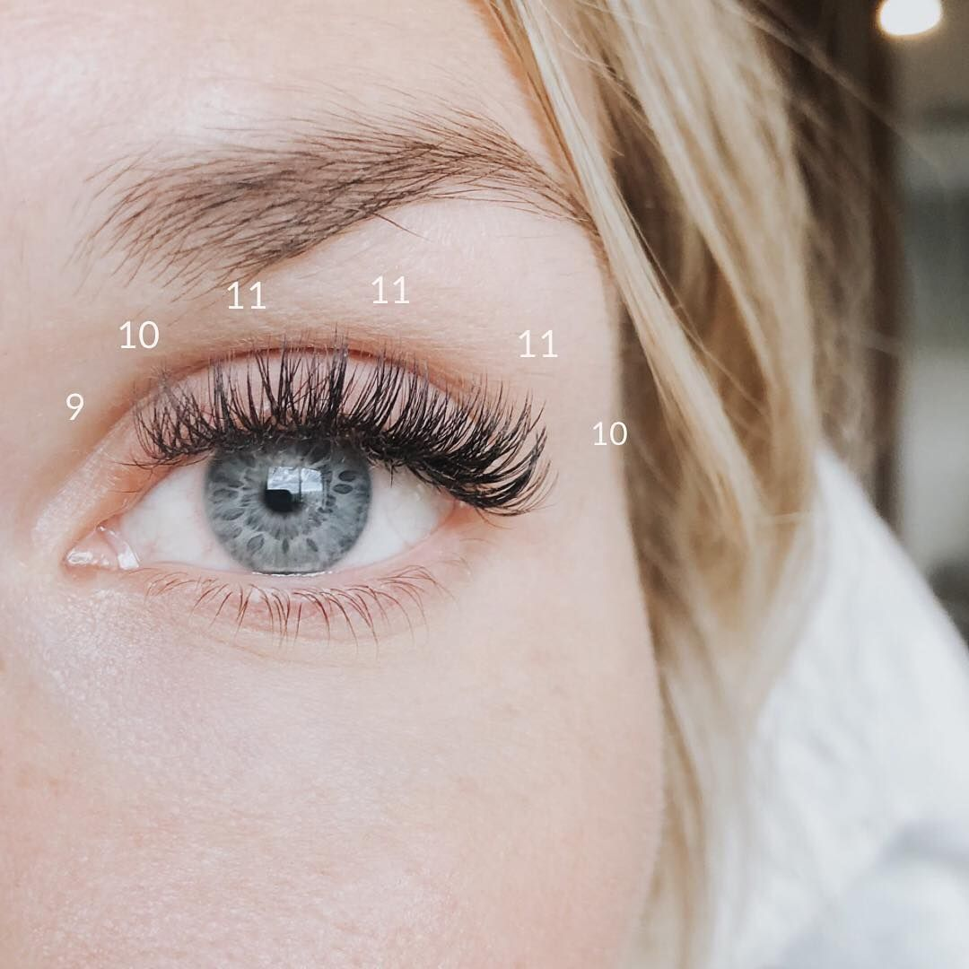 Check out this lash mapping as shared by minkys