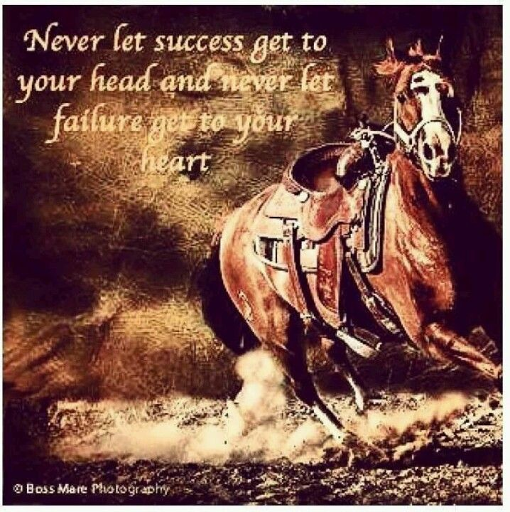 Inspirational Horse Quotes, Rodeo
