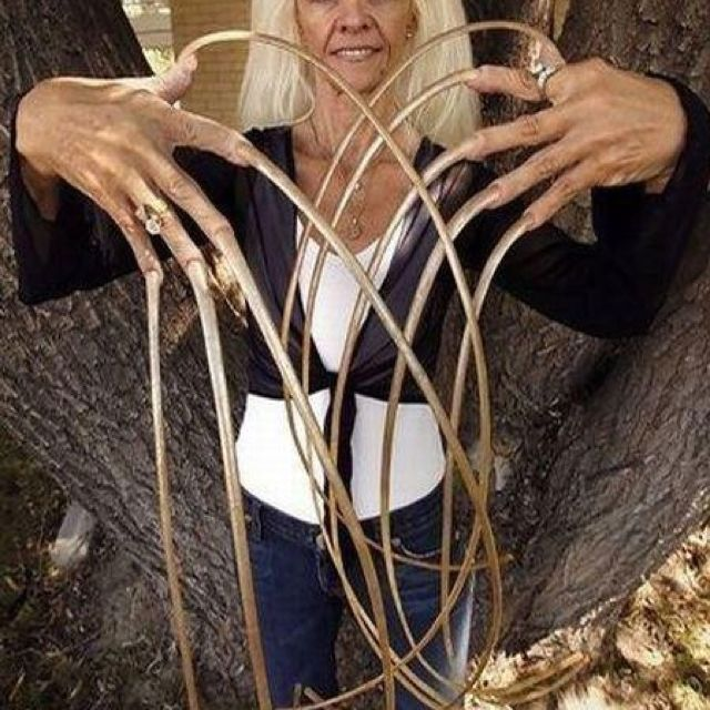 World\'s Longest Nails ever | Guineas book of world records | Pinterest