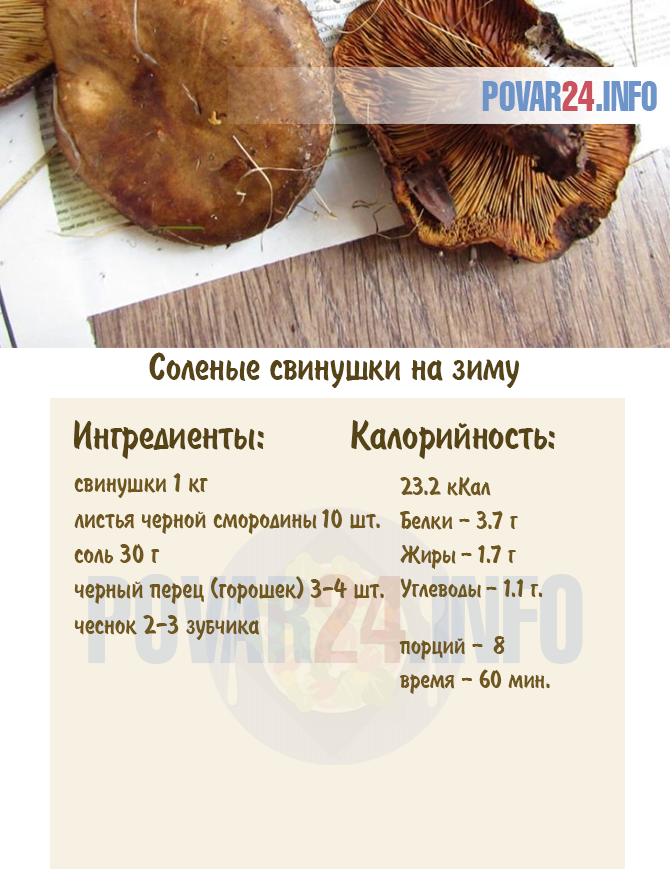 Соленые свинушки грибы рецепты приготовления