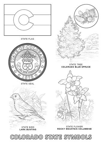 Colorado State Symbols Coloring Page From Colorado
